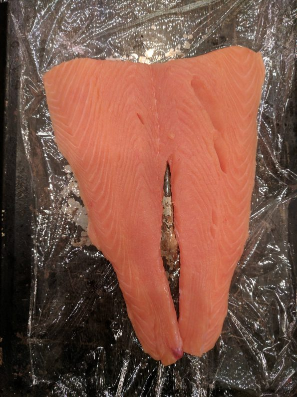 Place each cut of salmon on a long piece of plastic wrap